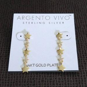 Argento Vivo Cascading⛲ Stars⭐ Earrings